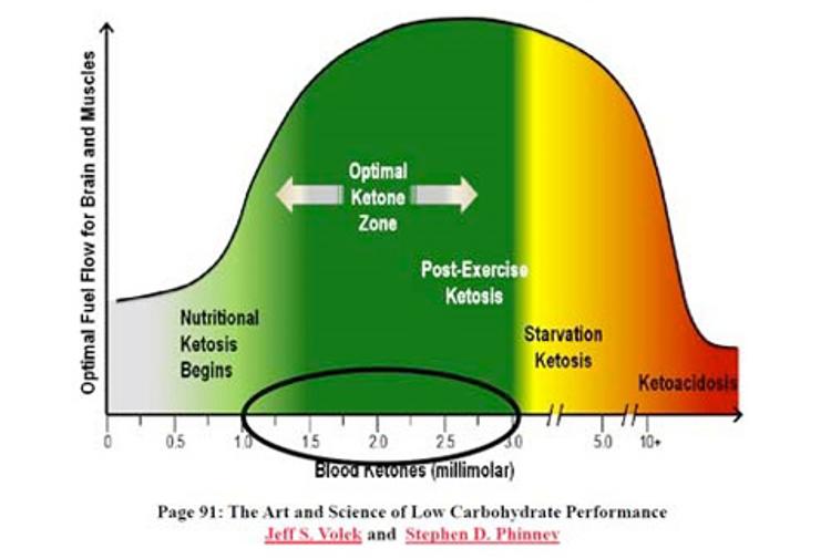 Dieta cetogénica en salud y deporte